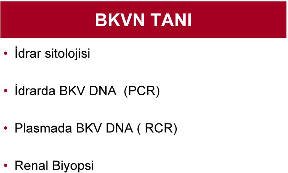 BKV DNA (PCR)