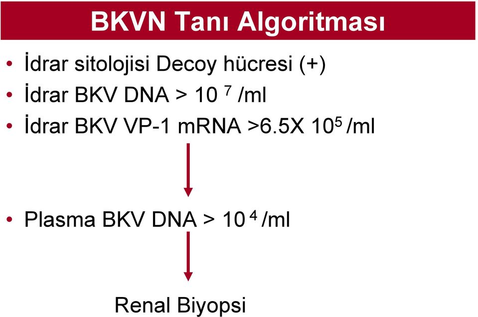 /ml İdrar BKV VP-1 mrna >6.