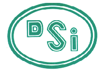 DSI SERVES IN FOUR SECTORS