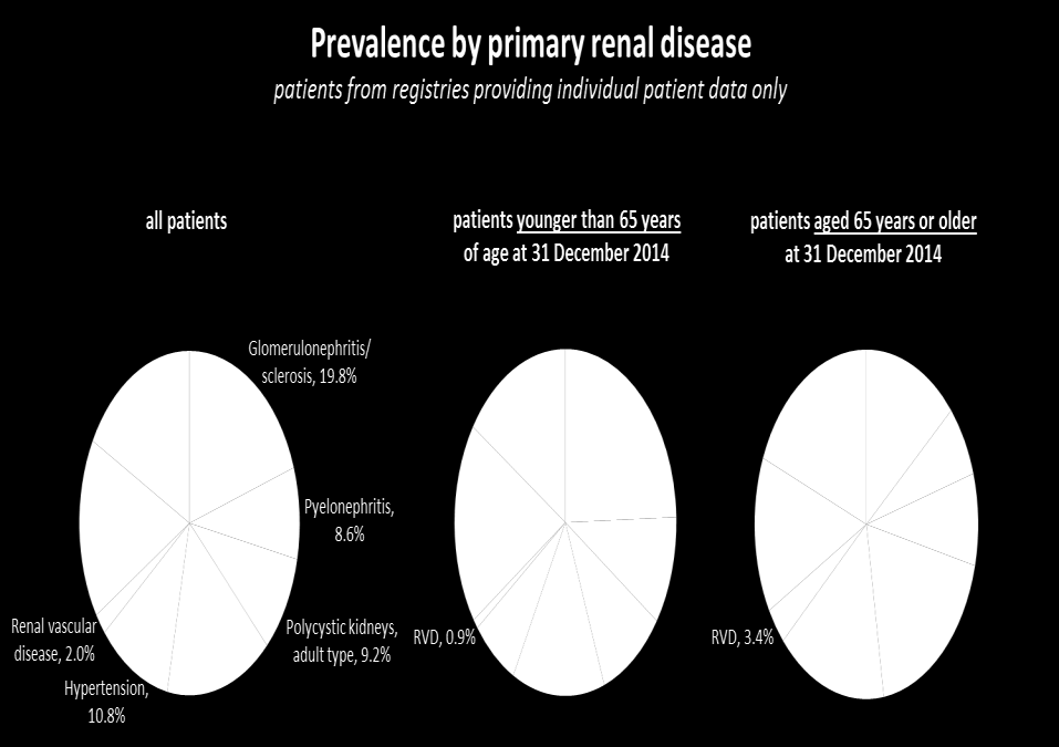 Prevalent patients on RRT in 2014 by