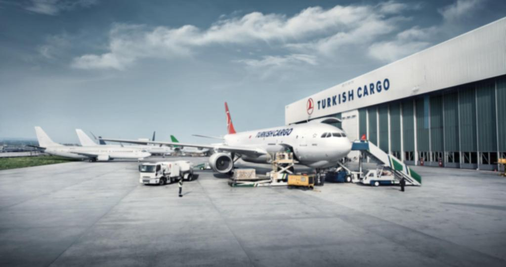 01 TURKISH CARGO VE TÜRK HAVA YOLLARI Turkish